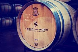 Bodega Vega de Yuso